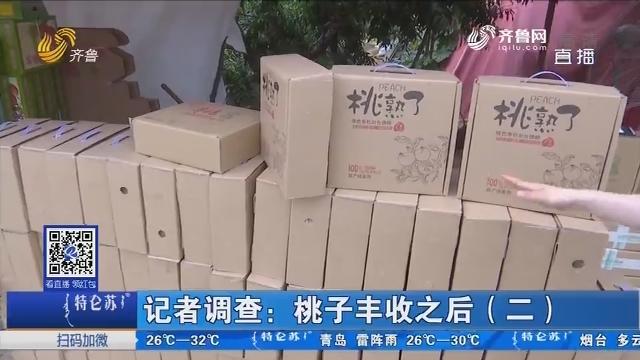 记者调查:桃子丰收之后(二)