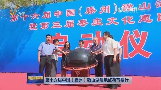 第十六届中国(滕州)微山湖湿地红荷节举行