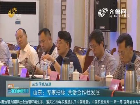 【三农信息快递】山东:专家把脉 共话合作社发展