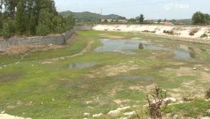 """烟台:持续干旱 栖霞部分地区用水""""告急"""""""