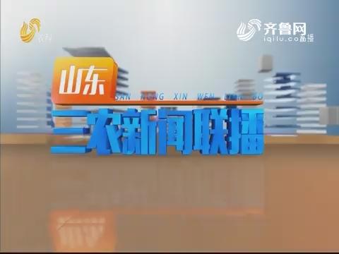 2019年07月30日山东三农新闻联播完整版