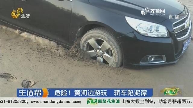 济南:危险!黄河边游玩 轿车陷泥潭