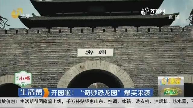 """潍坊:开园啦!""""奇炒恐龙园""""爆笑来袭"""