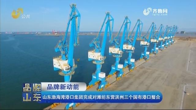 【品牌新动能】山东渤海湾港口集团完成对潍坊东营滨州三个国有港口整合