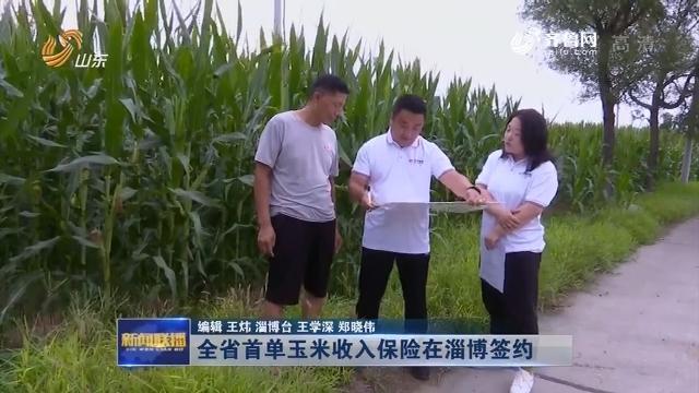 全省首单玉米收入保险在淄博签约