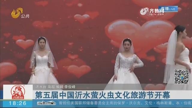第五届中国沂水萤火虫文化旅游节开幕