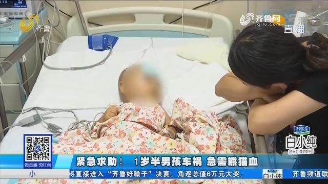 东营:紧急求助!1岁半男孩车祸 急需熊猫血