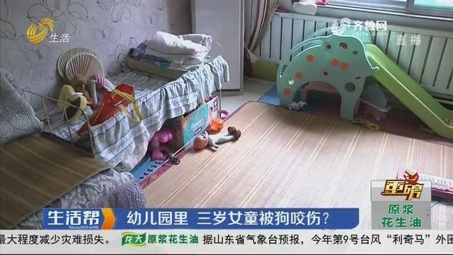 【重磅】淄博:幼儿园里 三岁女童被狗咬伤?