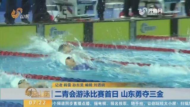 二青会游泳比赛首日 山东勇夺三金
