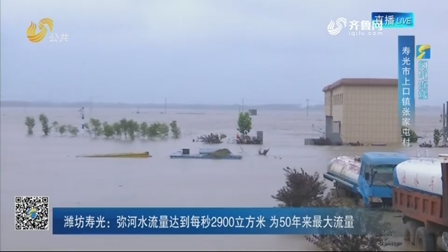 【闪电连线】潍坊寿光:弥河水流量达到每秒2900立方米 为50年来最大流量