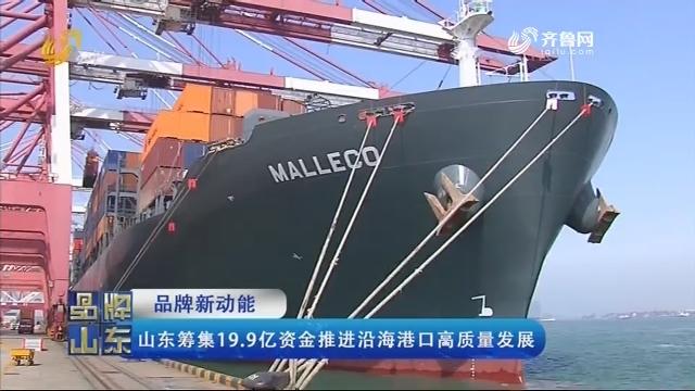 【品牌新动能】山东筹集19.9亿资金推进沿海港口高质量发展