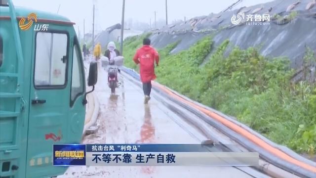 """【抗击台风""""利奇马""""】不等不靠 生产自救"""