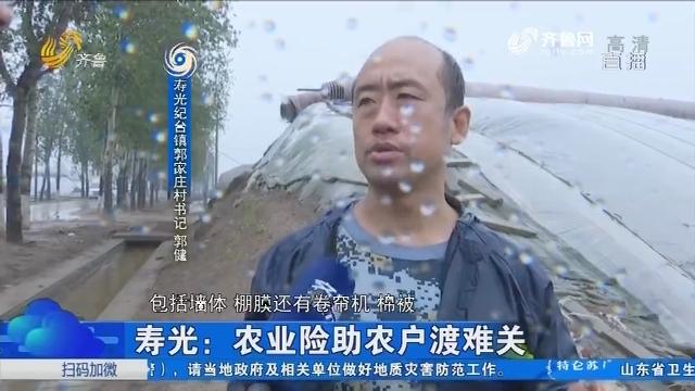 寿光:农业险助农户渡难关