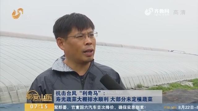 """【抗击台风""""利奇马""""】寿光蔬菜大棚排水顺利 大部分未定植蔬菜"""