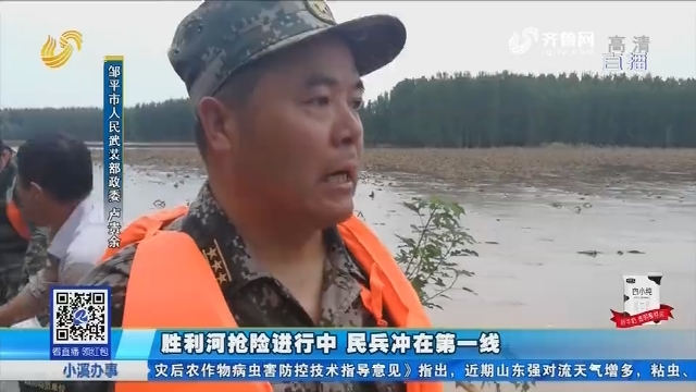 邹平:胜利河抢险进行中 民兵冲在第一线