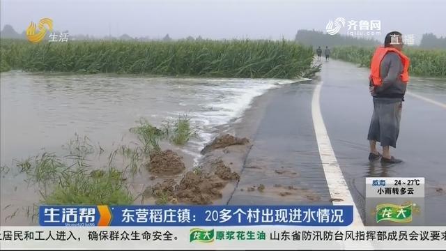东营稻庄镇:20多个村出现进水情况