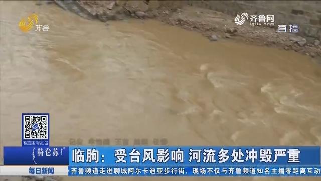 临朐:受台风影响 河流多处冲毁严重
