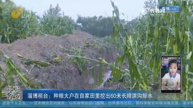 淄博桓台:种粮大户在自家田里挖出60米长排洪沟排水