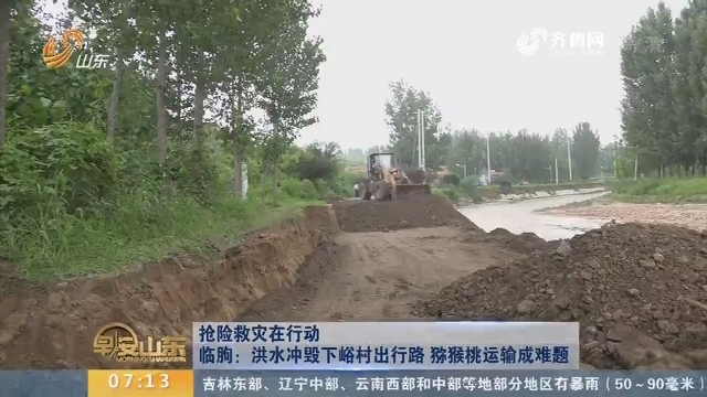 【抢险救灾在行动】 临朐:洪水冲毁下峪村出行路 猕猴桃运输成难题