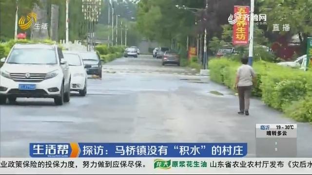 """探访:马桥镇没有""""积水""""的村庄"""