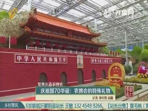 【聚焦长春农博会】庆祖国70华诞:农博会的特殊礼物