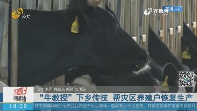 """临朐:""""牛教授""""下乡传技 帮灾区养殖户恢复生产"""