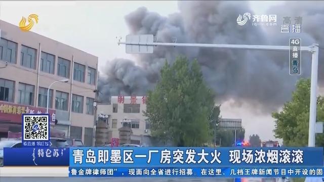 【4G直播】青岛即墨区一厂房突发大火 现场浓烟滚滚