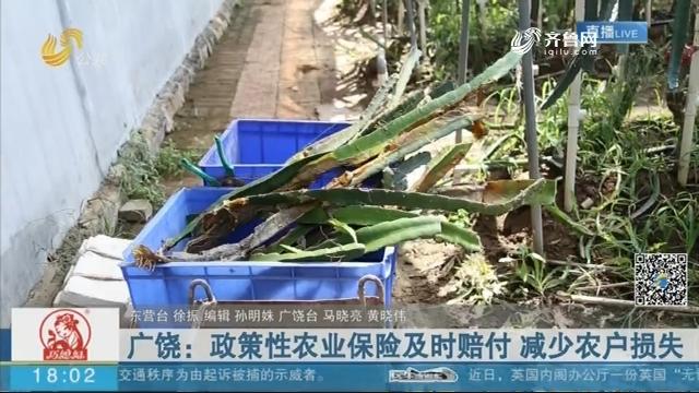 广饶:政策性农业保险及时赔付 减少农户损失