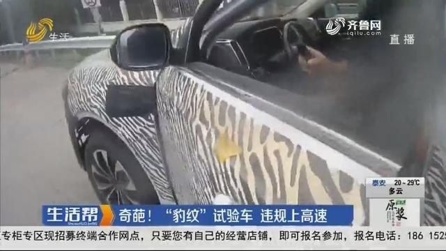 """奇葩!""""豹纹""""试验车 违规上高速"""