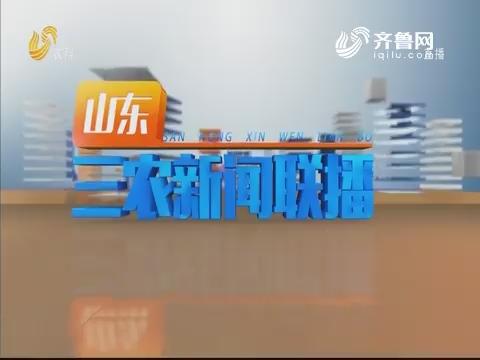 2019年08月20日山东三农新闻联播完整版