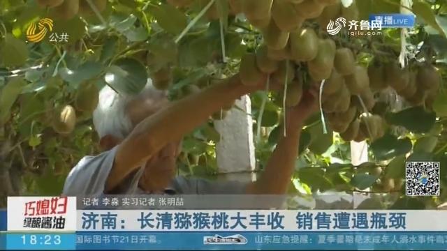济南:长清猕猴桃大丰收 销售遭遇瓶颈