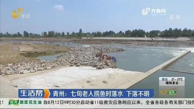 青州:七旬老人捞鱼时落水 下落不明