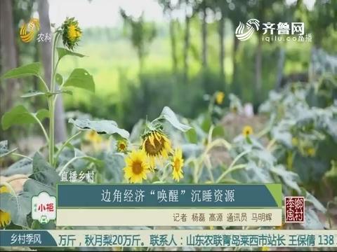 """【直播乡村】边角经济""""唤醒""""沉睡资源"""