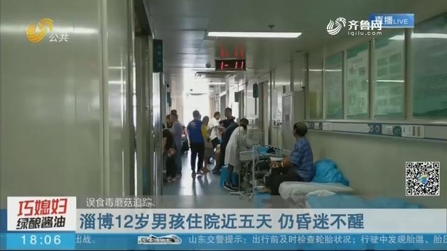 【误食毒蘑菇追踪】淄博12岁男孩住院近五天 仍昏迷不醒