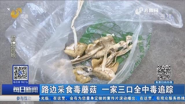 路边采食毒蘑菇 一家三口全中毒追踪