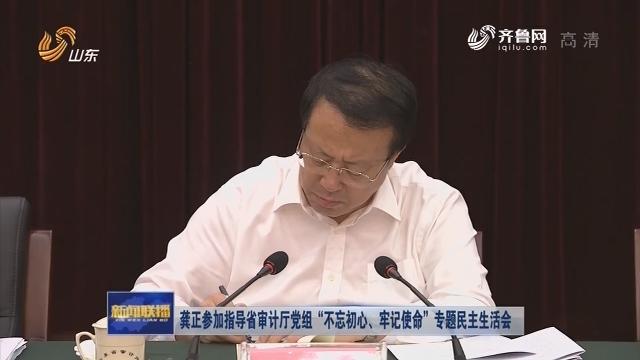 """龔正參加指導省審計廳黨組""""不忘初心、牢記使命""""專題民主生活會"""