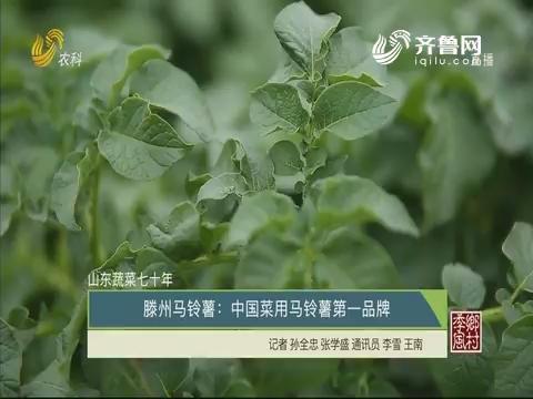 【山东蔬菜七十年】滕州马铃薯:中国菜用马铃薯第一品牌