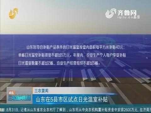 【三农要闻】山东在5县市区试点日光温室补贴
