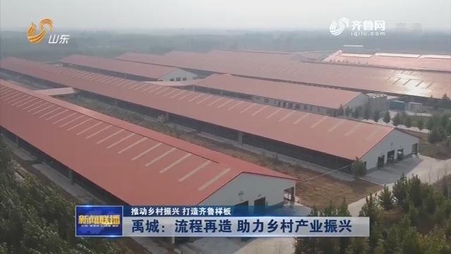 【推动乡村振兴 打造齐鲁样板】禹城:流程再造 助力乡村产业振兴