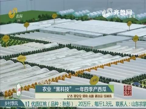 """【直播乡村】农业""""黑科技"""" 一年四季产西瓜"""