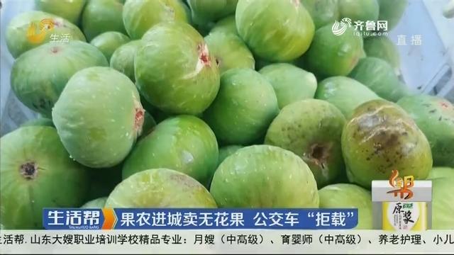 """威海:果农进城卖无花果 公交车""""拒载"""""""