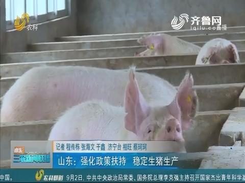 【稳定生猪市场】山东:强化政策扶持 稳定生猪生产