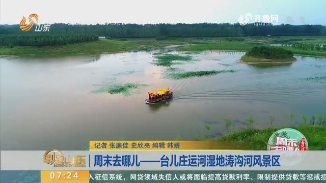 周末去哪儿——台儿庄运河湿地涛沟河风景区