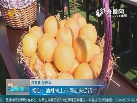 【走齐鲁 看样板】烟台:油桃初上市 网红来促销