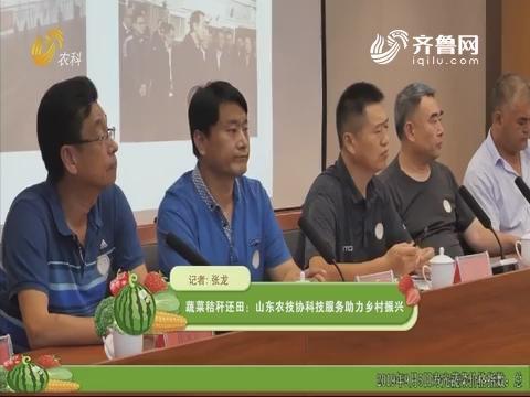 蔬菜秸秆还田:山东农技协科技服务助力乡村振兴
