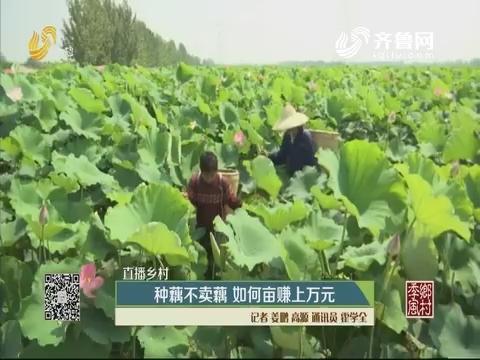 【直播乡村】种藕不卖藕 如何亩赚上万元