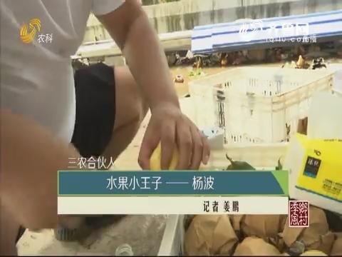 【三农合伙人】水果小王子——杨波