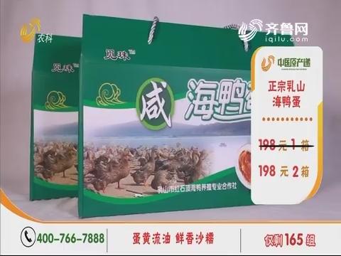 20190906《中国原产递》:海鸭蛋