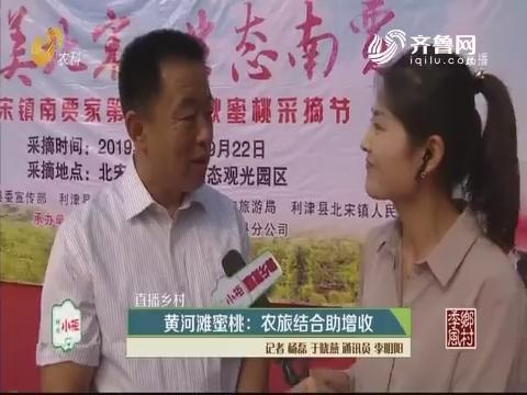 【直播乡村】黄河滩蜜桃:农旅结合助增收