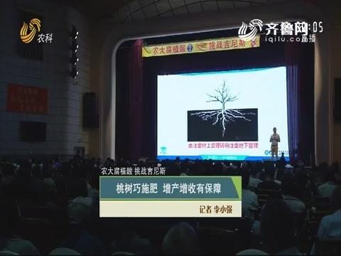 【农大腐植酸 挑战吉尼斯】桃树巧施肥 增产增收有保障